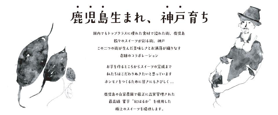 鹿児島生まれ、神戸育ち